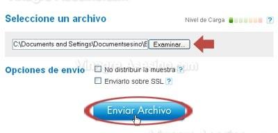 Enviar virus a Virus Total