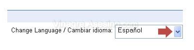 Cambia el idioma de la Interfaz de Gmail