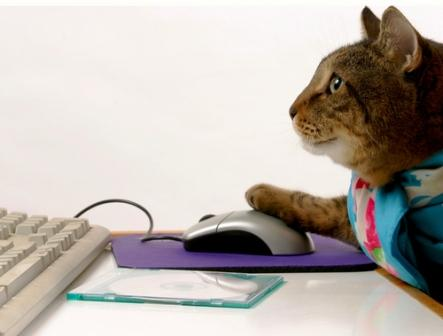 "gato computadora ""Mi computadora es una gato""."