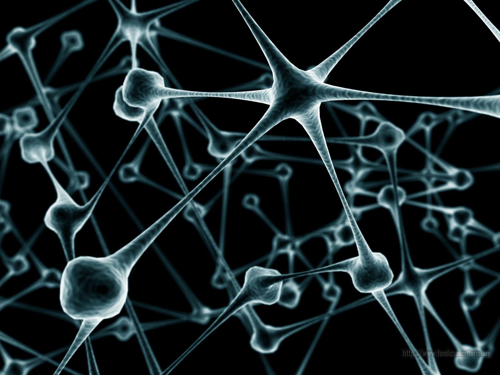 Desarrollan brazo rob  243 tico para las neuronas entre el MIT y Georgia    Neurons Wallpaper Black And White