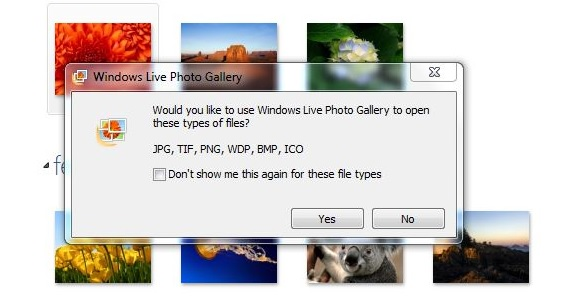 Windows Live Photo Gallery 01