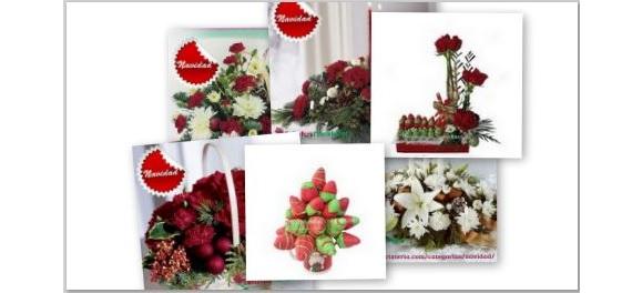 collage de imágenes con Picasa 04