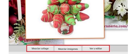 collage de imágenes con Picasa 06