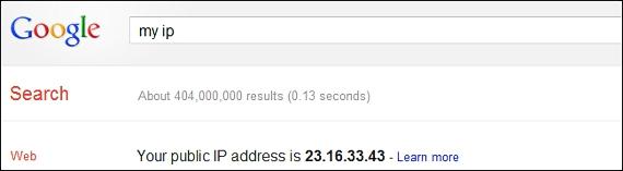 dirección IP en Google