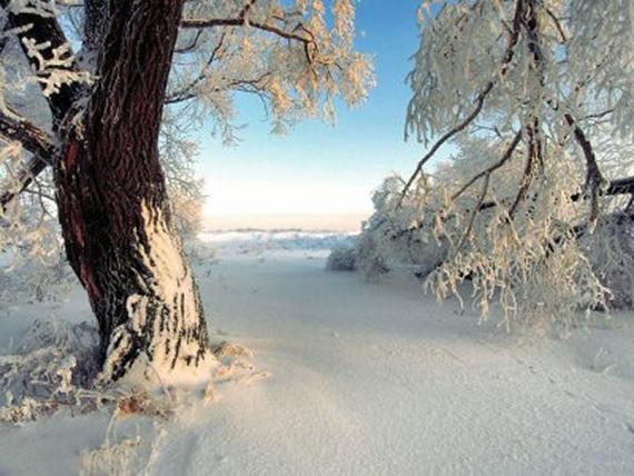 tutorial-9-consejos-para-fotografiar-en-invierno-10