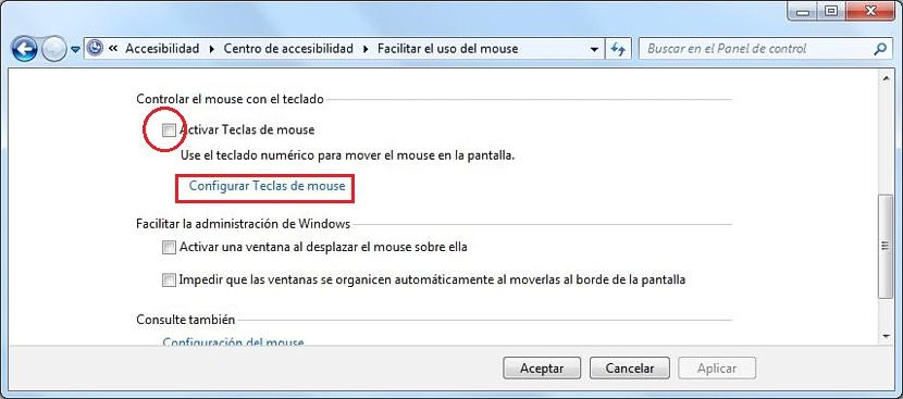pixel a pixel en Windows 02