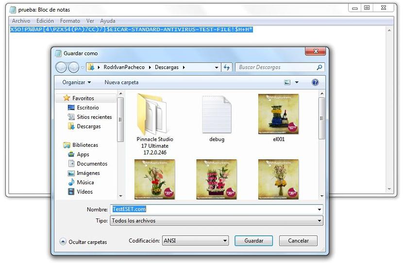 ver extensiones de archivos 01