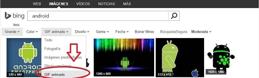Gifs animados en Bing