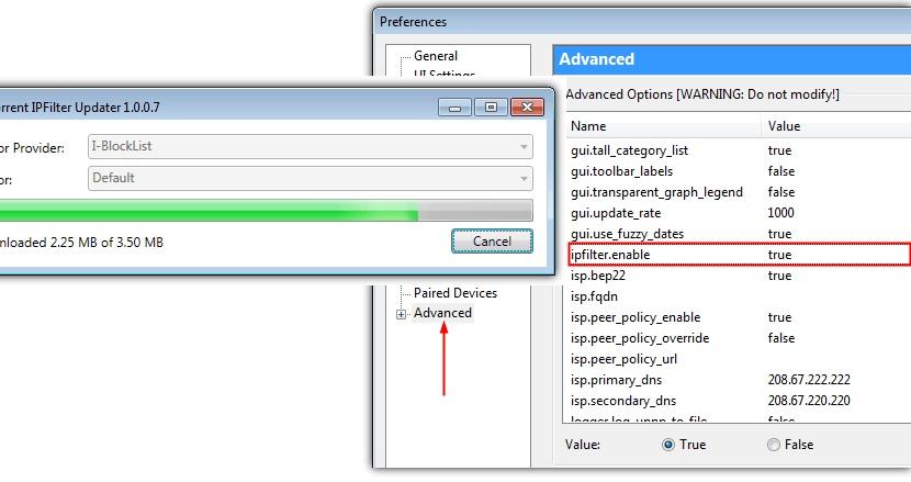 ocultar IP para descargas seguras en Torrent 01