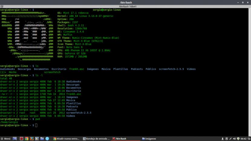 comandos básicos terminal linux