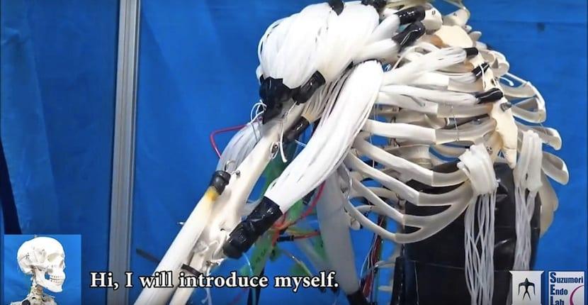 músculos robóticos