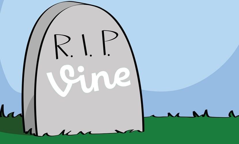 R.I.P. Vine