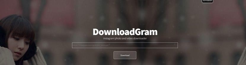 Imagen del servicio Downloadgram