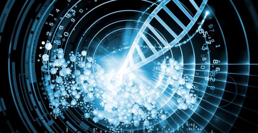 ADN Sintético