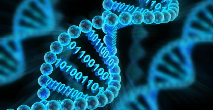 Ya es posible hackear un ordenador utilizando moléculas de ADN