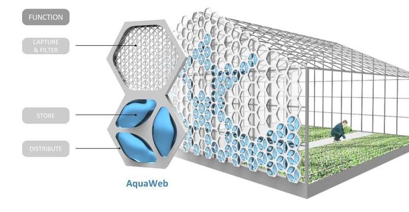 AquaWeb, de nexloop retiene el agua de la humedad ambiente