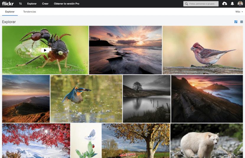 página principal Flickr