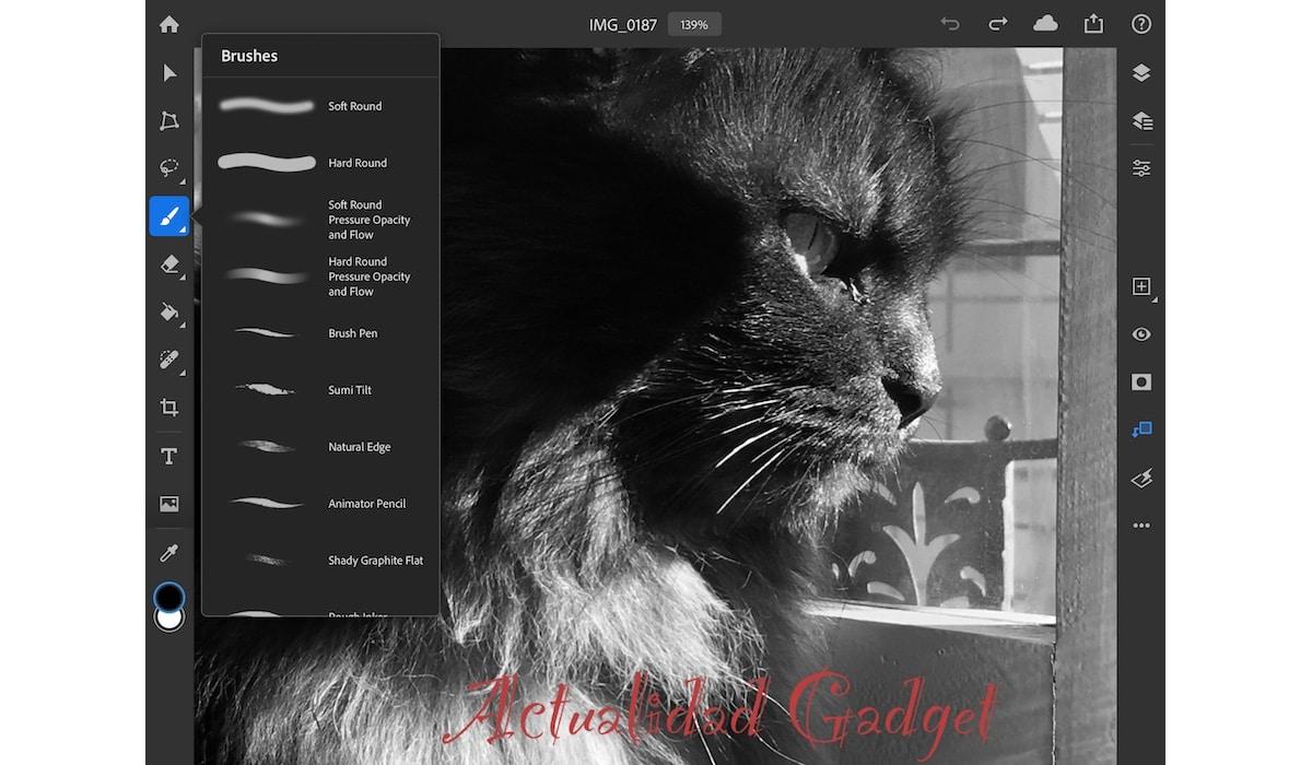 Photoshop para iPad