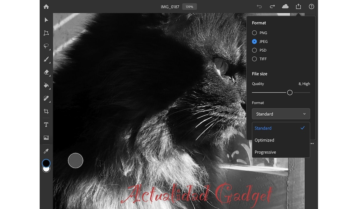 Photoshop para iPad